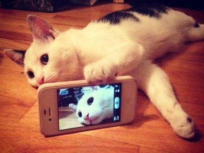 Long time no selfie!