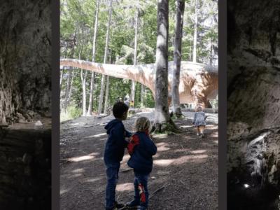 Excursie la Dino Parc și Peștera Valea Cetății